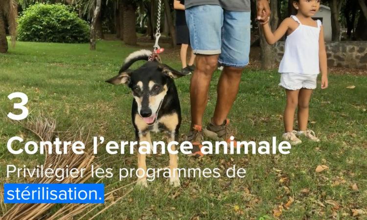 La question animale, le bien être, l'errance animale, le risque sanitaire et de sécurité mais aussi leur souffrance, est souvent une variable aléatoire. (...)